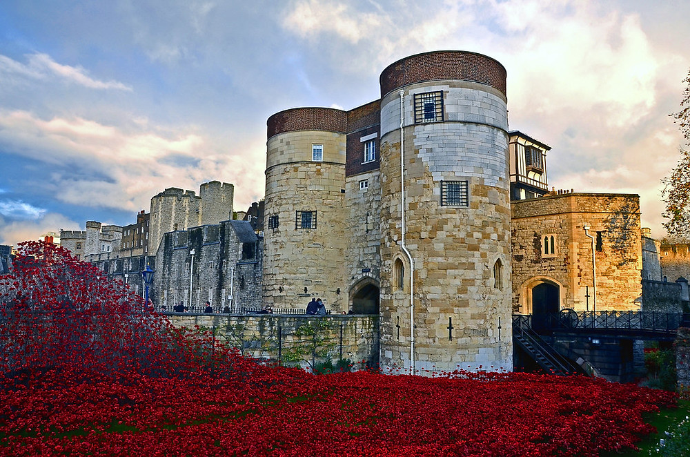 the Tower of London -- the poppies in the moat represent the British military fatalities from WWI