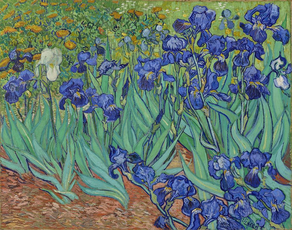 Van Gogh, Irises, 1889