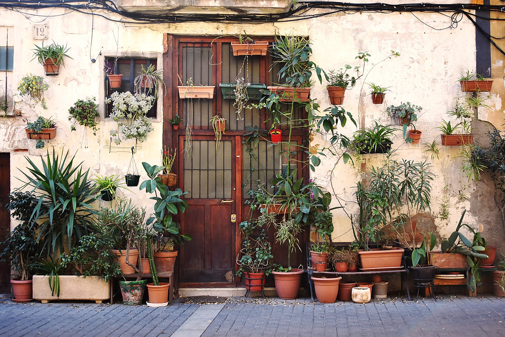 the Plant Wall in Barcelona's El Born neighborhood