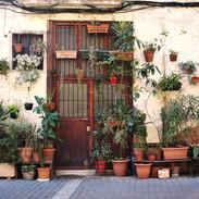 the Plant Wall in El Born Barcelona