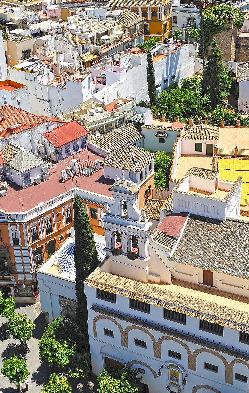 aerial view of Barrio Santa Cruz from La Giralda