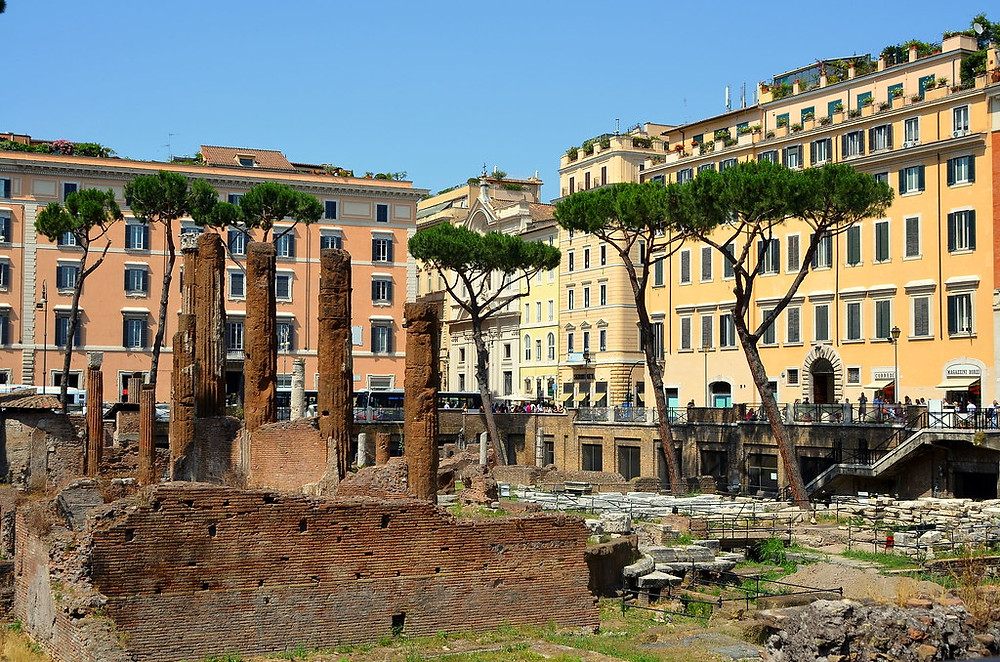 Largo di Torre Argentina, the spot where Caesar was murdered in Rome