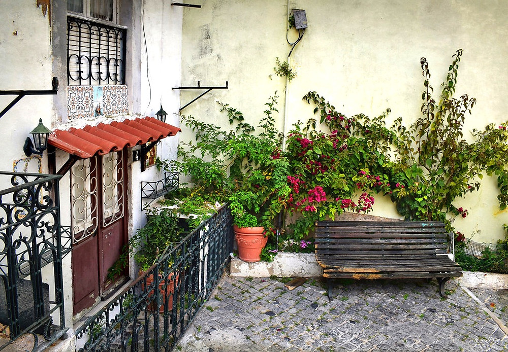 house on the cobbled streets of Alfama, with bougainvillea vine
