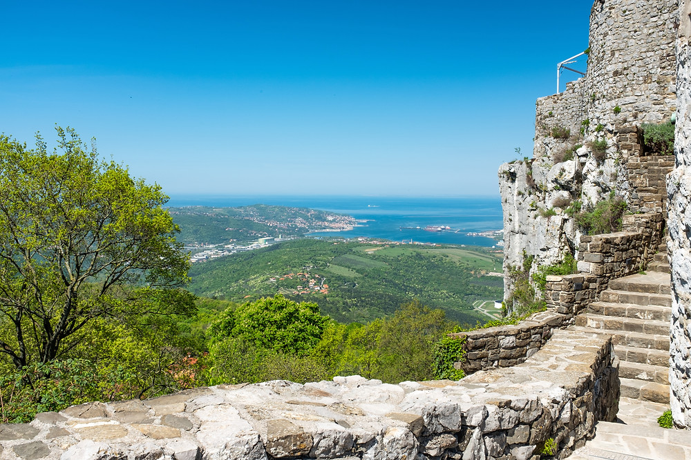 view of the Adriatic Sea from the Socerb Castle ruins