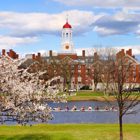 Best Things To Do and See In Cambridge Massachusetts In One Day