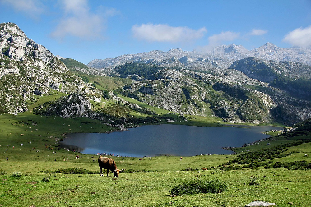 rolling hills of the Asturias region of northern Spain