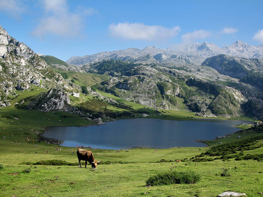 """One Week in Northern Spain, the Perfect Itinerary for """"Green Spain"""""""