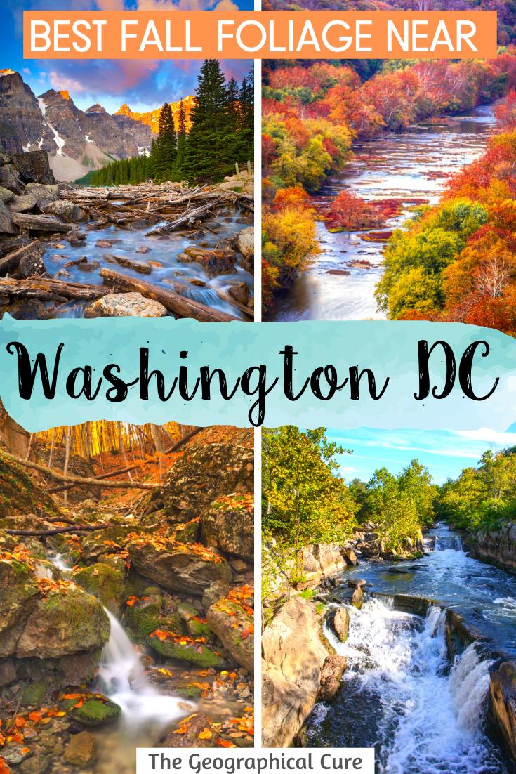 The Best Fall Foliage Near Washington DC