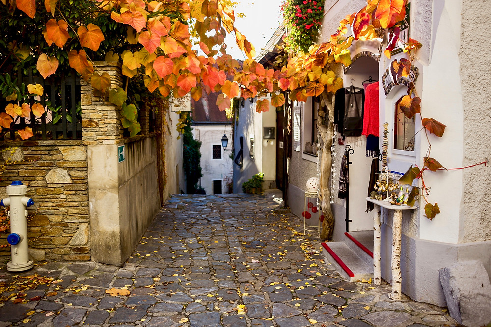 cute little nook of Dürnstein, in the Wachau Valley, dressed in fall colors