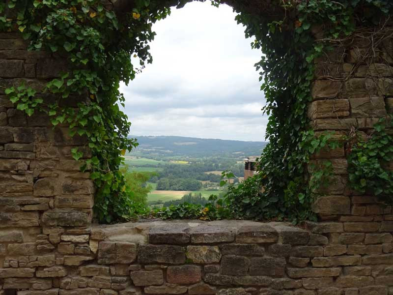 a peak at the countryside through yet another arch, this time vine covered
