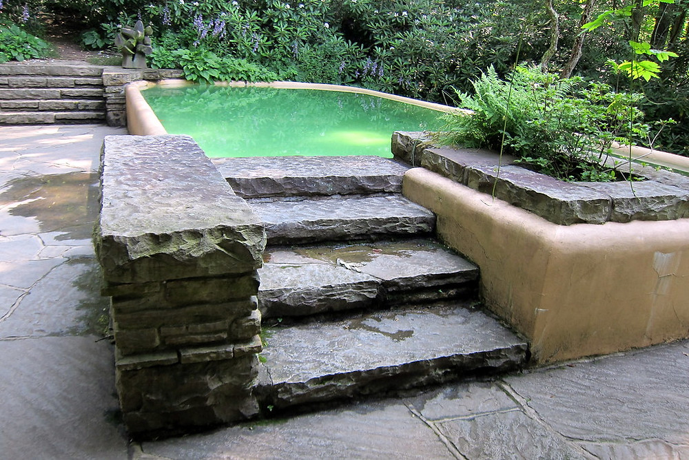 """the """"swimming pool"""" at Fallingwater -- beautifully set in nature, but not long enough for swimming"""