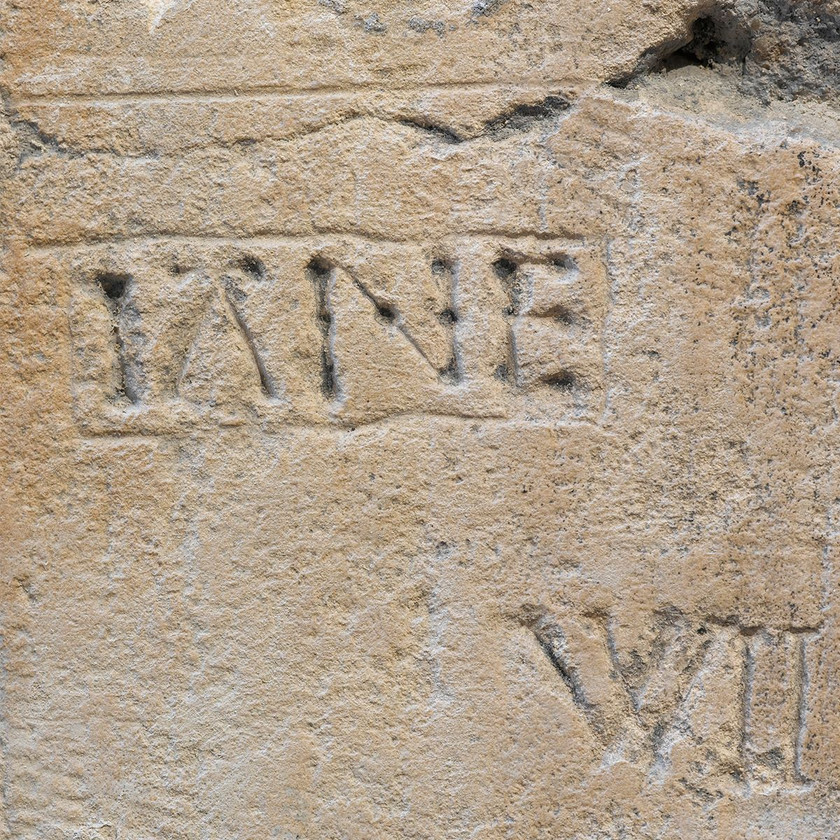 inscription reading 'Iane' (an older spelling of 'Jane') also survives nearby, likely by a sup[porter of Lady Jane Grey