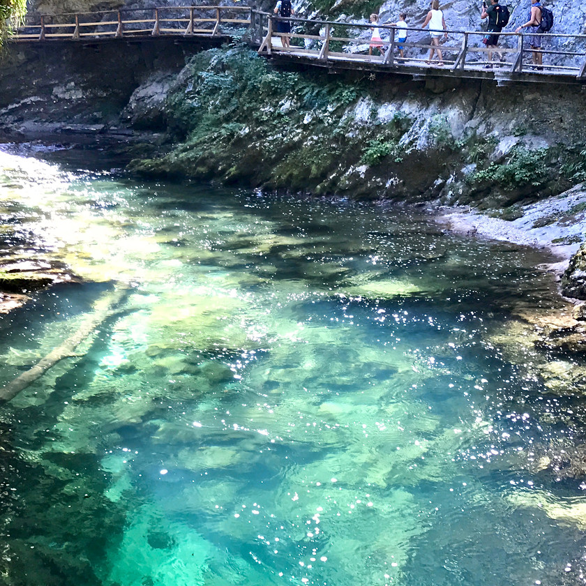 the beautifully colored water in Vintgar Gorge Slovenia