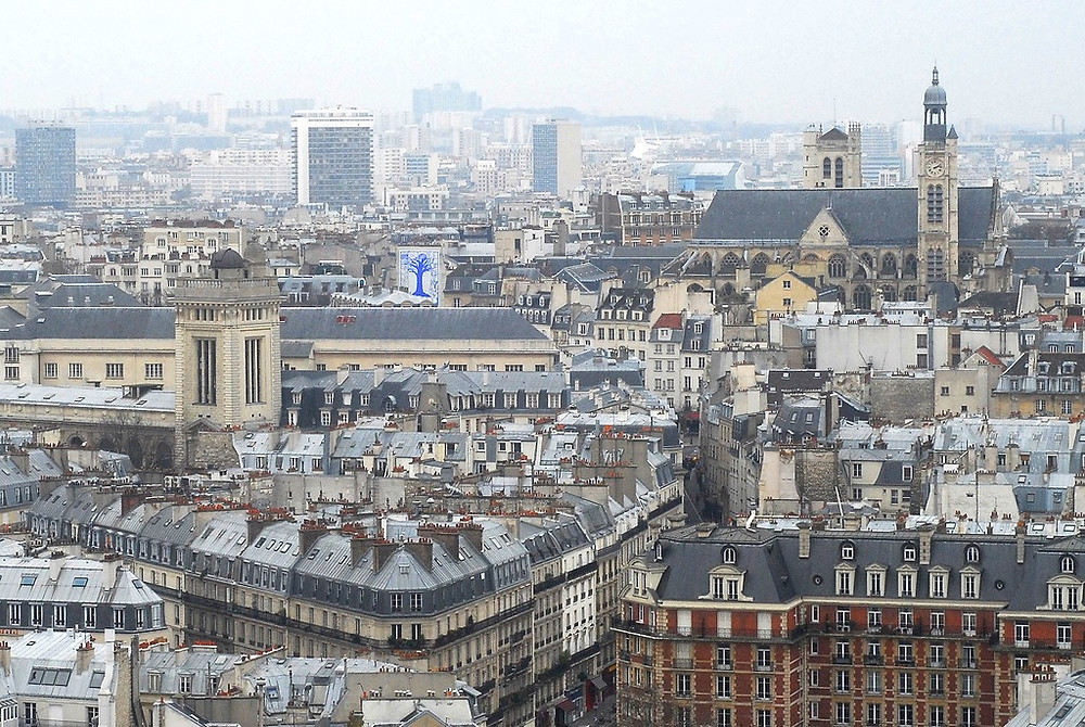 the very confusing Left Bank of Paris, as seen from Notre Dame