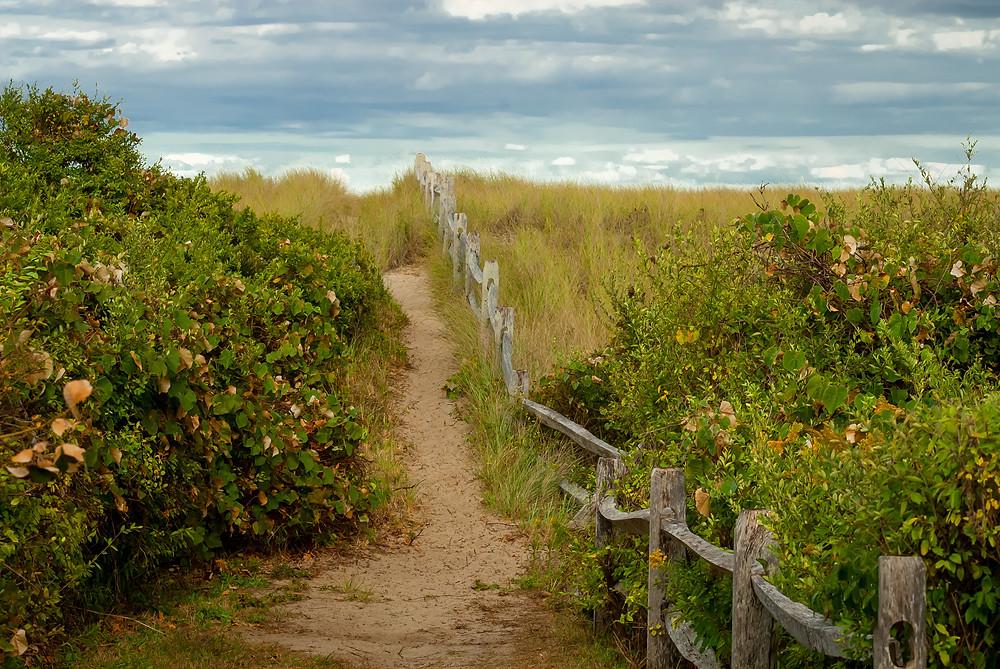 The pathway to the Siasconset beach, Nantucket island MA