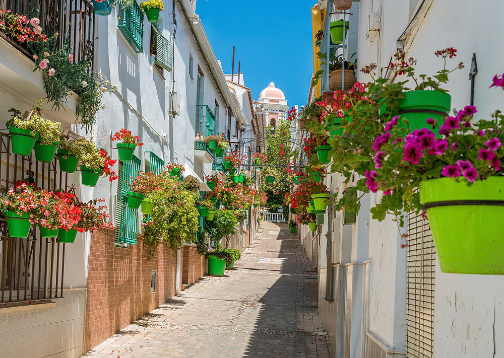 flower-lined street in Estepona