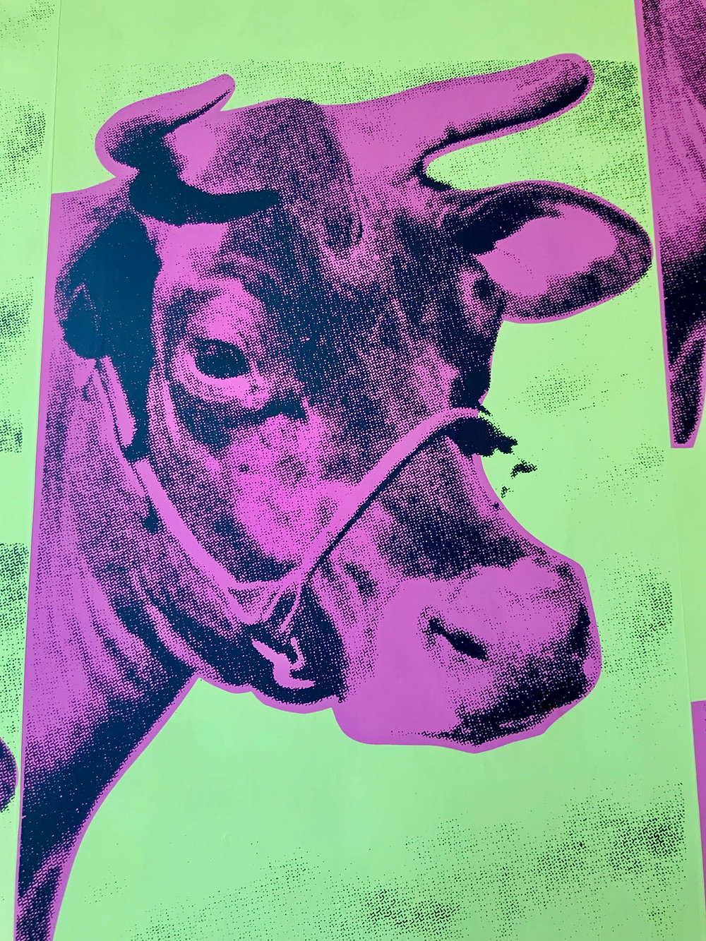 the cow wallpaper at the entrance of the Andy Warhol Museum in Pittsburgh