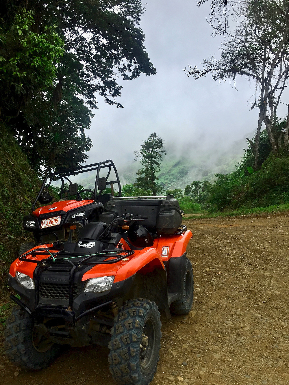 the fog covers the mountain as we go sloth hunting