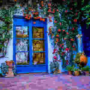 colorful patio in Cordoba Spain
