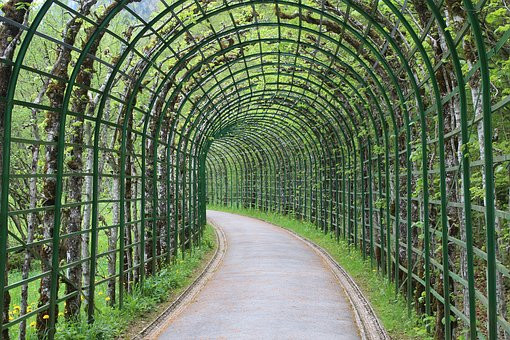 trellised pathway leading to the Music Pavilion in Linderhof Park