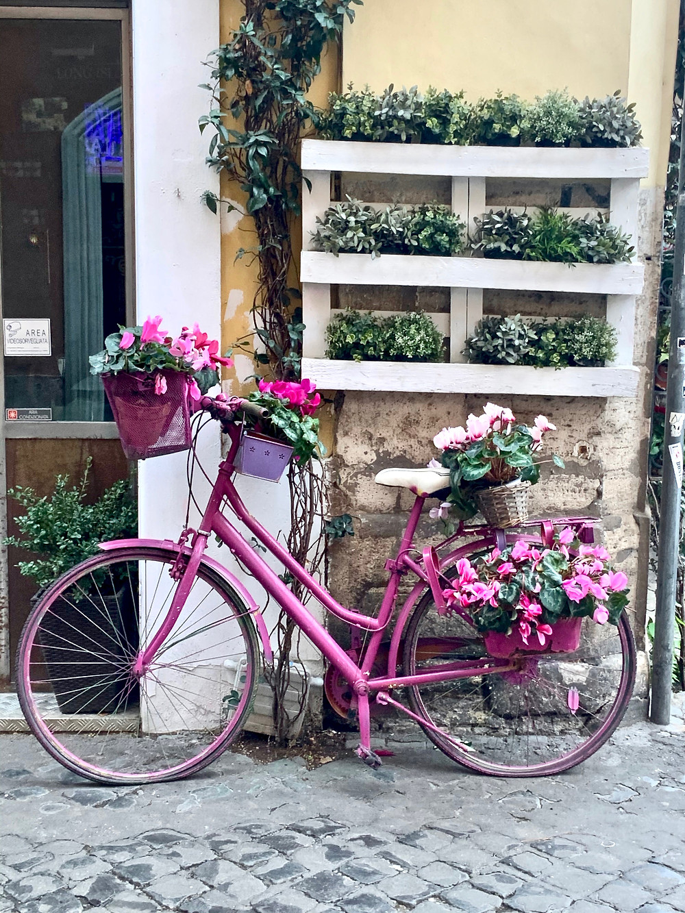bike in Rome's Trastevere neighborhood