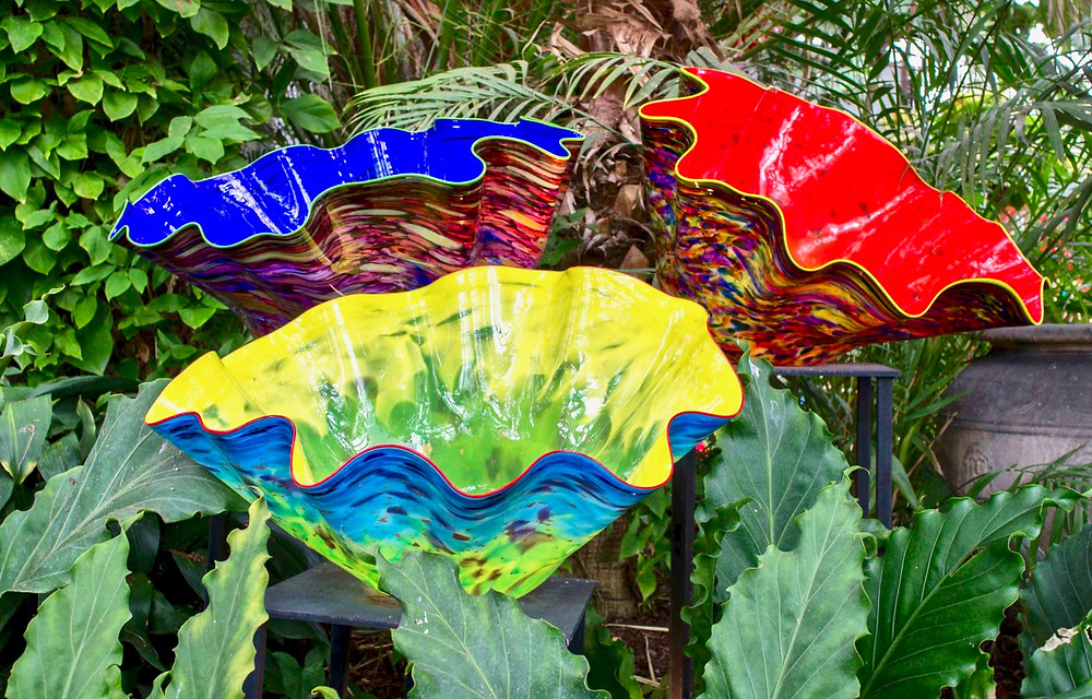 Chihuly's Macchia Bowls in the Palm Court at the Phipps