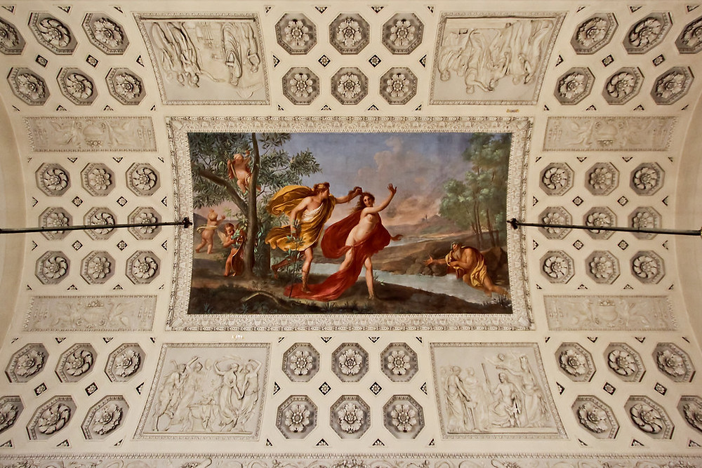 ceiling in the Pitti Palace in Florence Italy