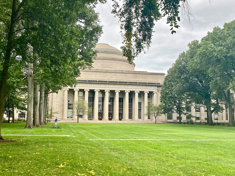 the green on the MIT campus