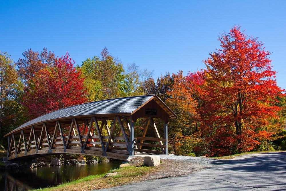 Fall colors in Sunapee NH