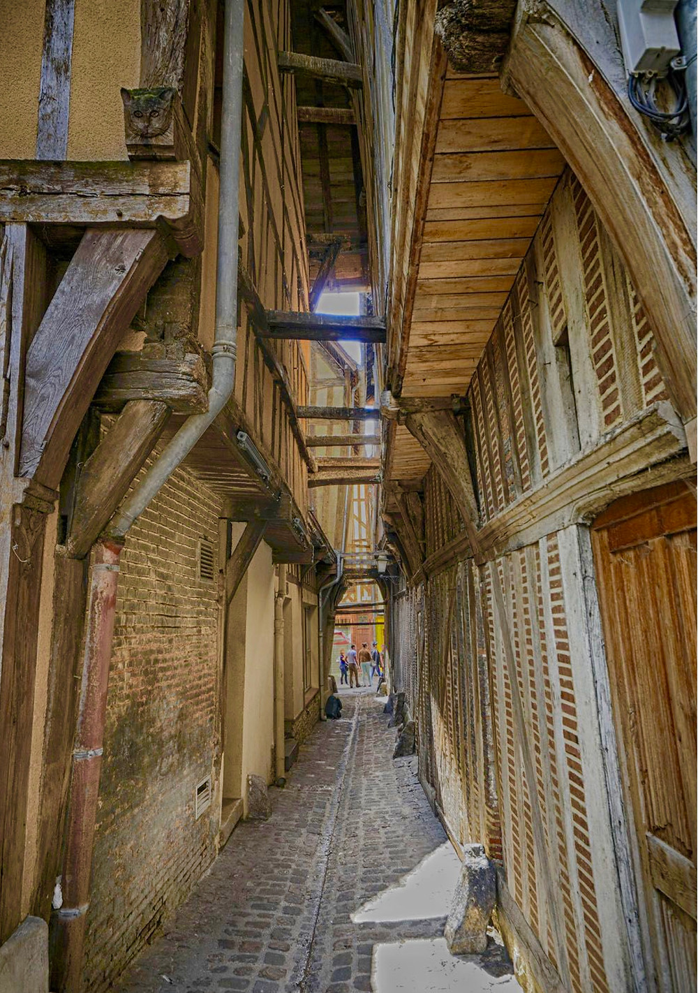 the medieval Ruelle du Chats in Troyes France
