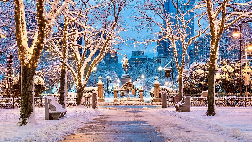 Boston Public Garden in winter