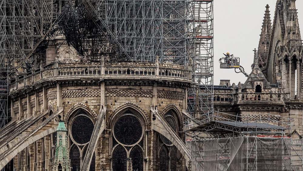 a scarred Notre Dame