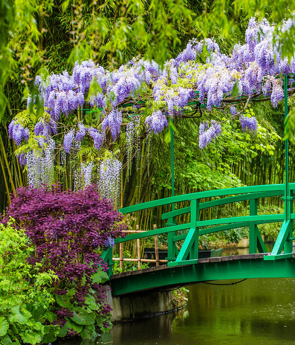 the iconic green bridge in the Water Garden