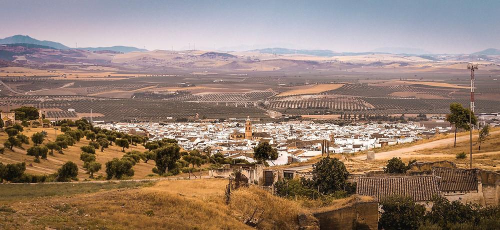 the arid landscape of Osuna Spain