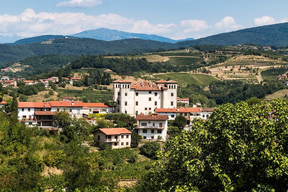 scenic view of Dobrovo Castle in Slovenia