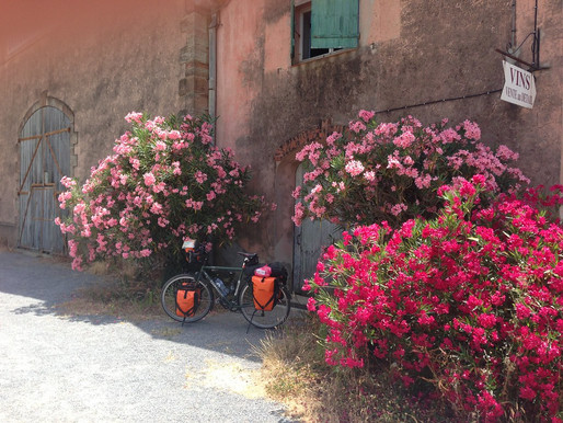 Charming Hidden Gems in Provence That I'll Never Forget
