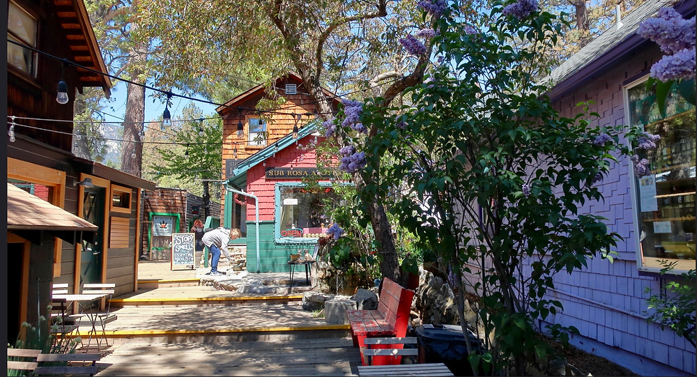 pretty shops in Idyllwild