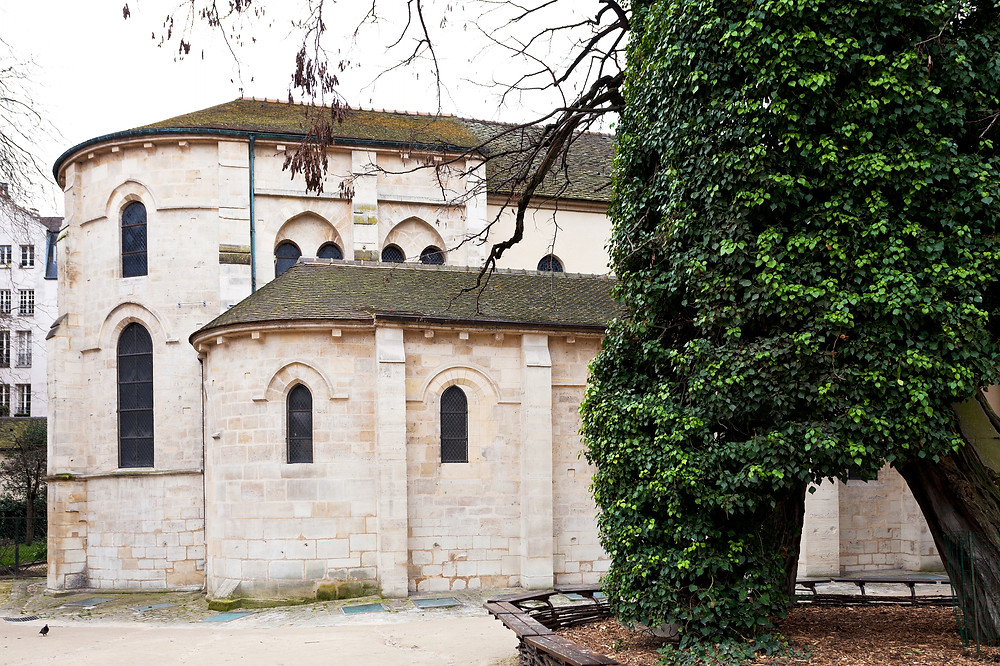 Church Saint Julien le Pauvre and oldest urban tree robinier on square Rene Viviani in Paris