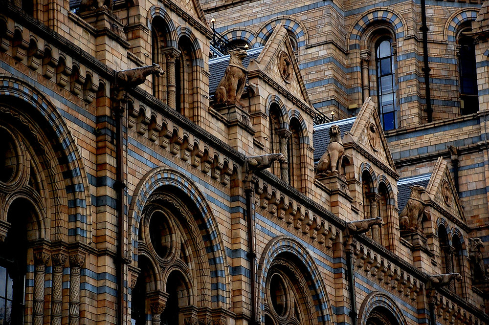 detail of the gorgeous brick facade of London's Natural History Museum
