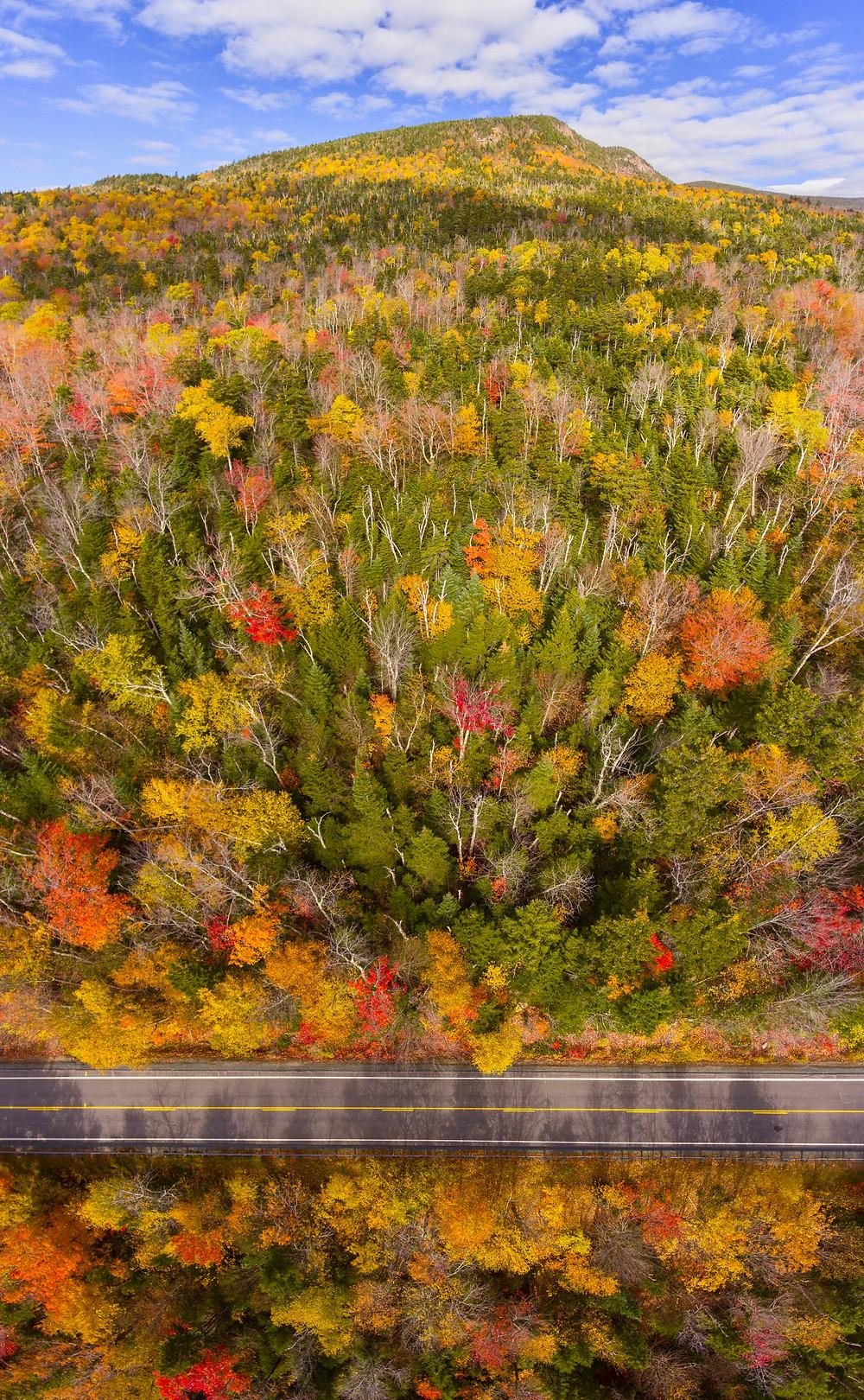 White Mountain National Forest fall foliage on Kancamagus Highway near Hancock Notch