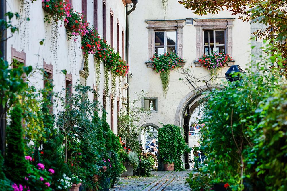 beautiful hidden garden in Regensburg