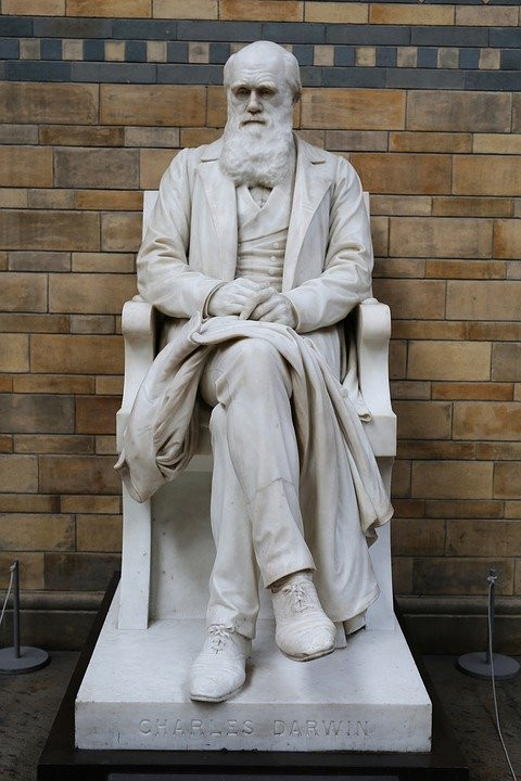 statue of Darwin, 1885, on the main staircase in Hintze Hall