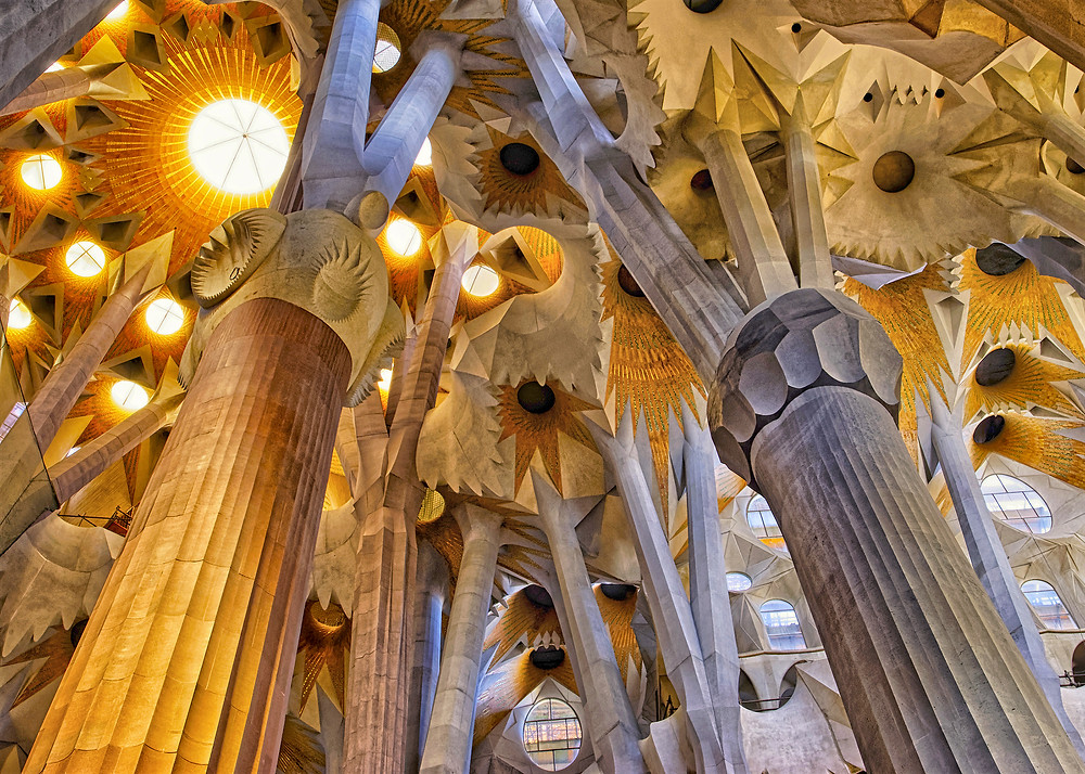 the tree columns of Sagrada Familia that grow into the ceiling