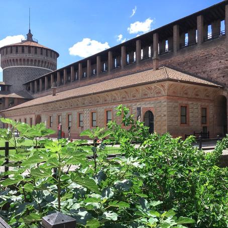 Leonardo da Vinci's Sala delle Asse in Milan Italy