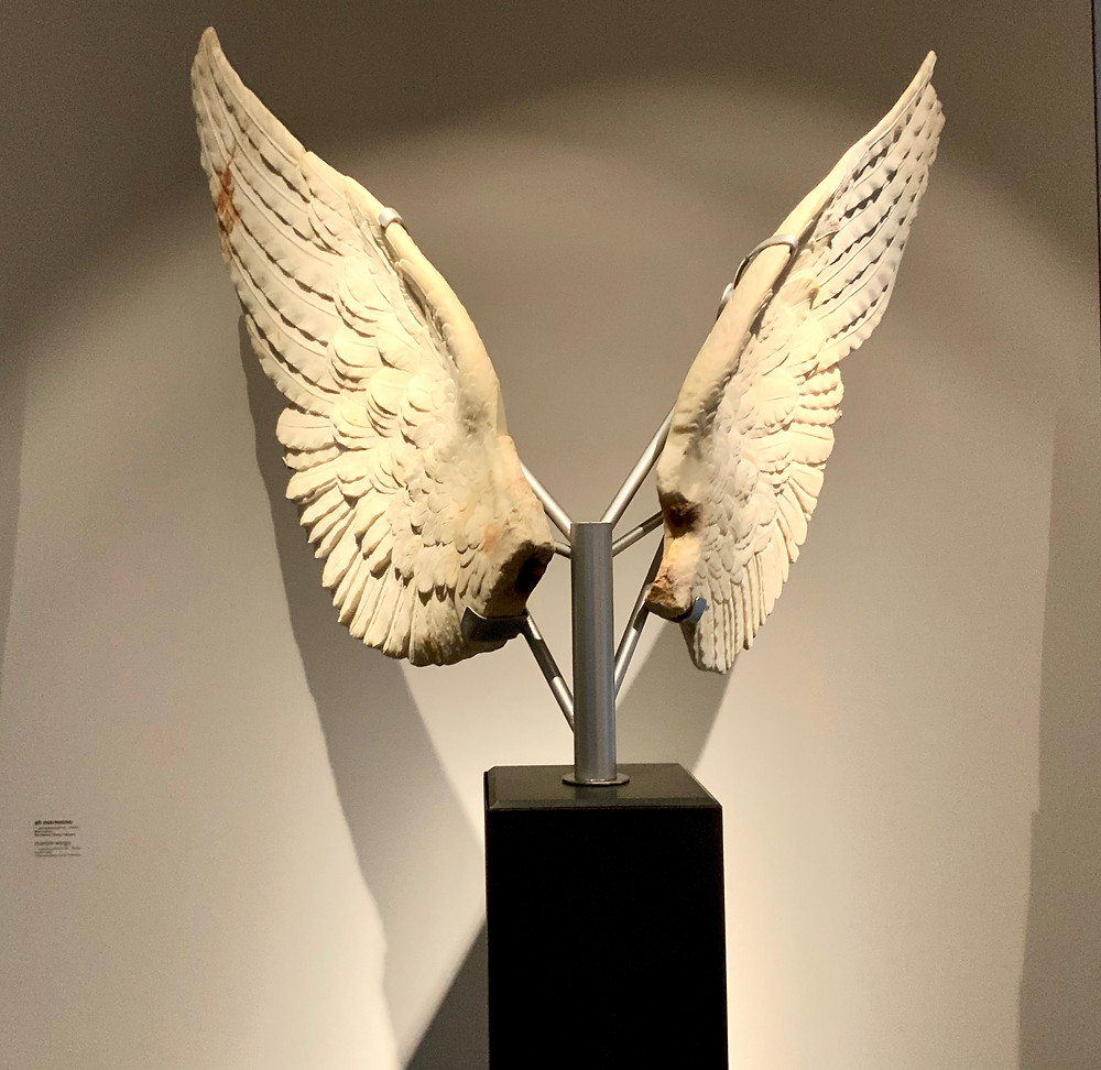Wings of Victory in the Palatine Museum