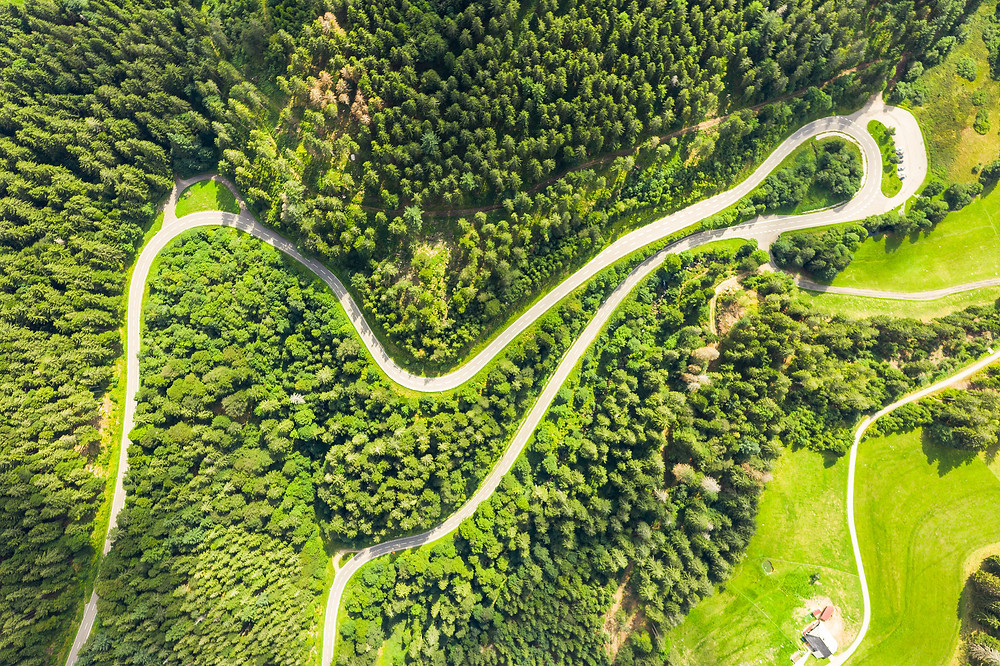 winding road in the Black Forest area of Germany