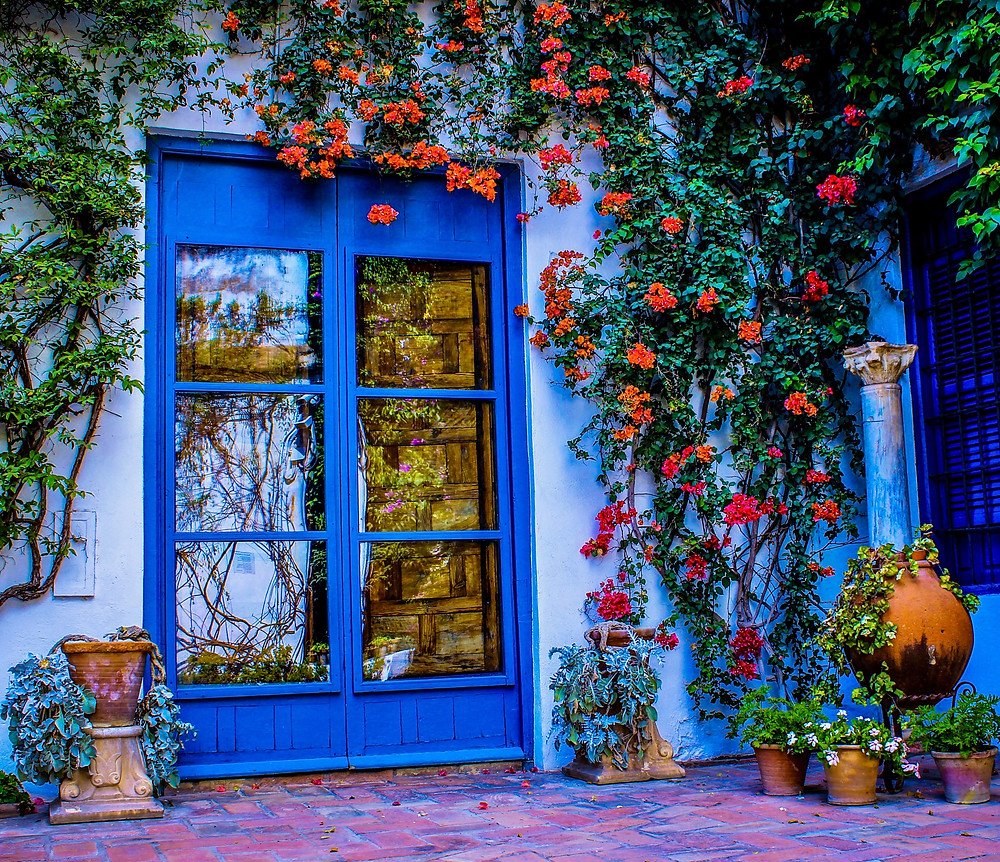 colorful flower patio in Cordoba