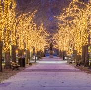 Boston Commons at Christmas
