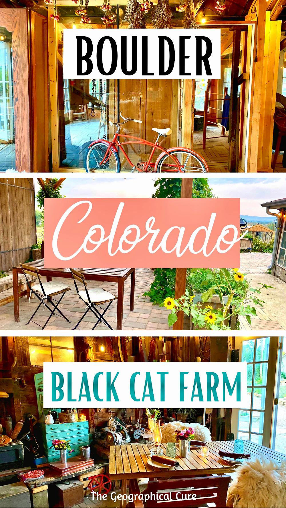 review of Black Cat Farm Dinners, Boulder's best restaurant