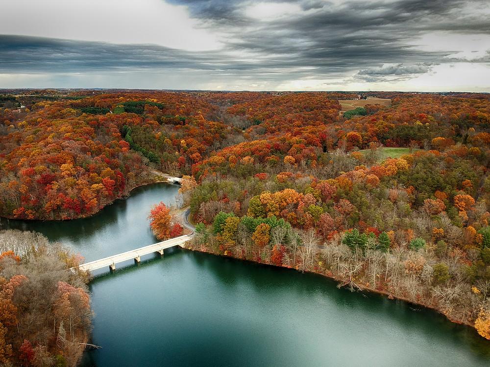 Aerial view of Little Seneca Lake at Black Hill Reginal Park